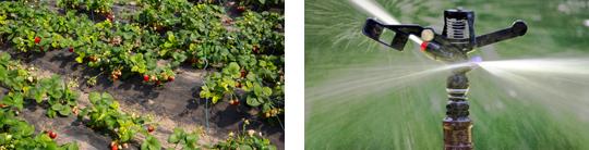 专注农业应用设备生产制造