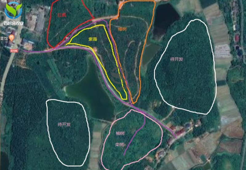 湖南攸县苗场滴灌水肥一体化方案预算