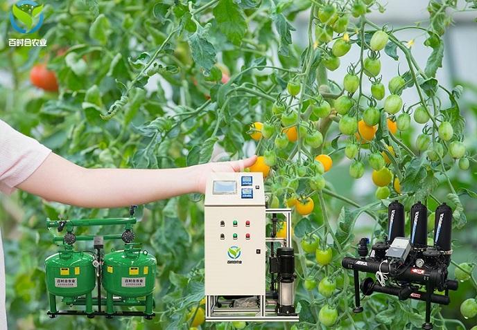 智能水肥一体机为北京春冬蔬菜生长提供有力保障!