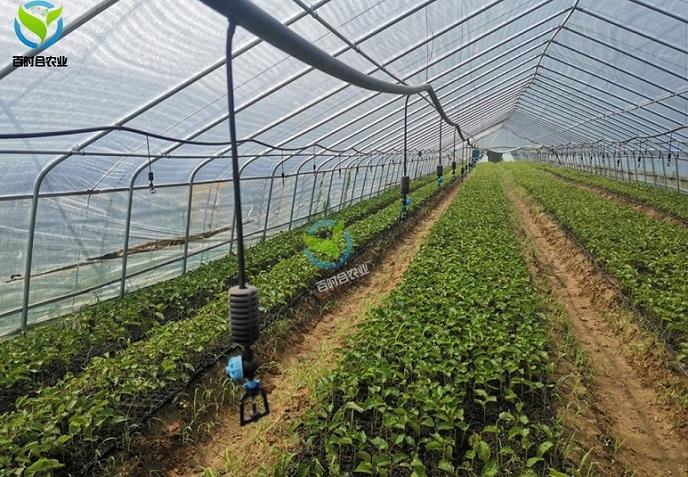 浅谈水肥一体机在大棚蔬菜种植中的应用