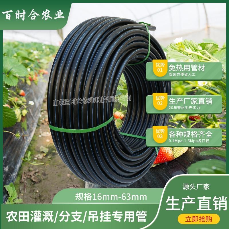 农田灌溉PE管 节水园林大棚作物黑色塑料免热熔线管盘管PE水管